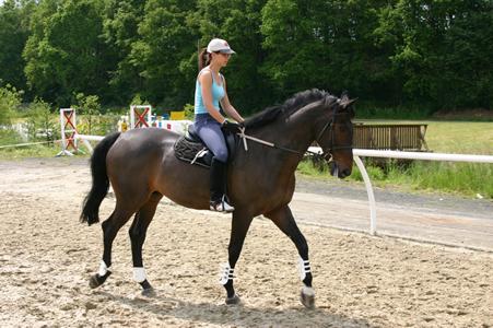 Покататься  на лошади в  конно-спортивных клубах Екатеринбурга