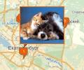 Где в Екатеринбурге находятся зоомагазины?