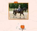 Где покататься на лошадях в Екатеринбурге?