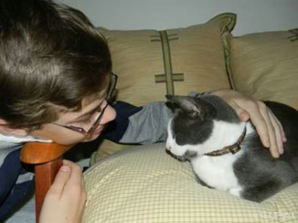 В каком питомнике купить кошку в Екатеринбурге?