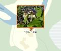 Памятник природы Вязовские лески и одиночные деревья вяза гладкого