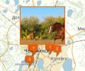Где покататься на лошадях в Челябинске?