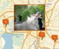 Где заказать организацию свадьбы в Челябинске?