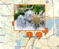 Где купить елку и елочные украшения в Челябинске?