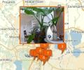 Где купить увлажнитель воздуха в Челябинске?