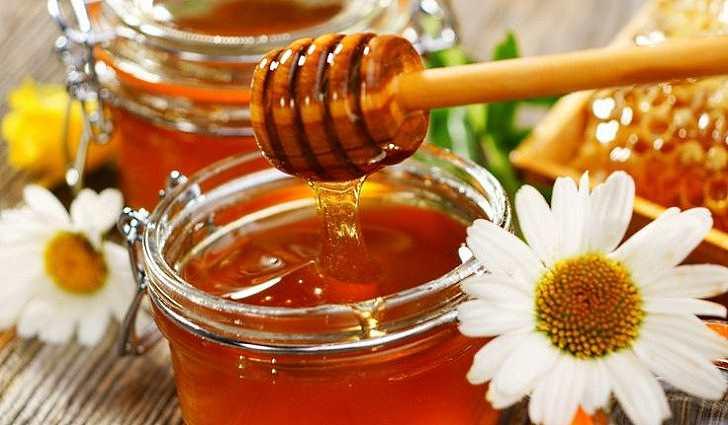 Где можно купить свежий мед и прополис в Челябинске?